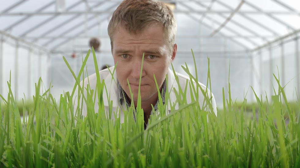 Agriseeds<br>Records TV Commercial