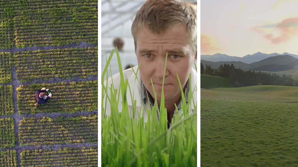 Agriseeds<br>Brand TV Commercial