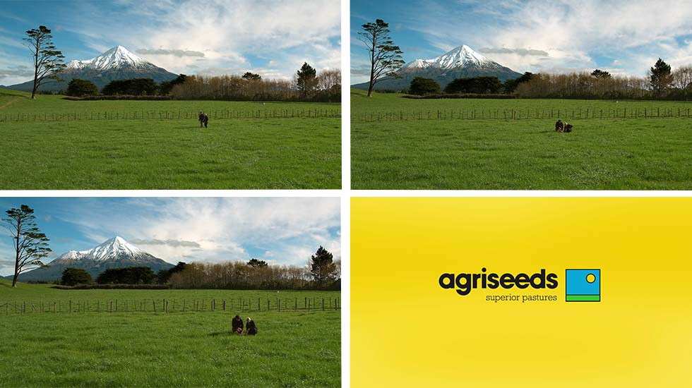 Agriseeds<br>FVI TV Commercial